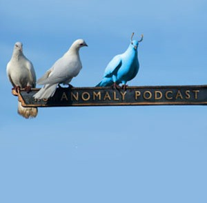 The genesis of the Anomaly Pigeon