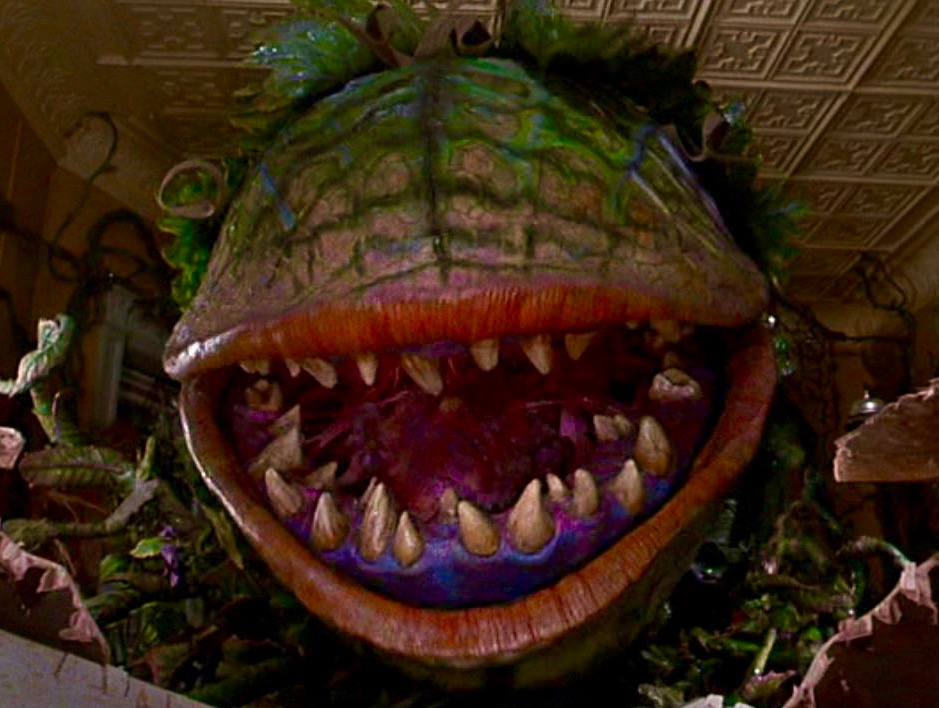 Anomaly supplemental little shop of horrors re release
